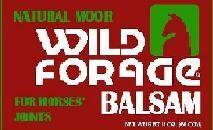 WildForagebalsambottleleaflet.jpg
